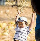 Adrian Voong, 3, gives himself a straw shower during the 2008 Pumpkin Festival at Cal Poly Pomona.