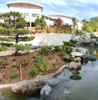 The Japanese Garden at Cal Poly Pomona offers a place of tranquility and rest.