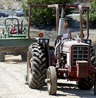 Danielle Duran and Alesha Solis, both sophomore Animal Science majors, drive tractors through Ag Valley at Cal Poly Pomona. It was the first time driving a tractor for both students.