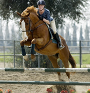 Hunt, Western Horse Teams Clinch Regional Championship Titles