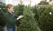 Christmas Trees, Holiday Gifts Available at the Farm Store
