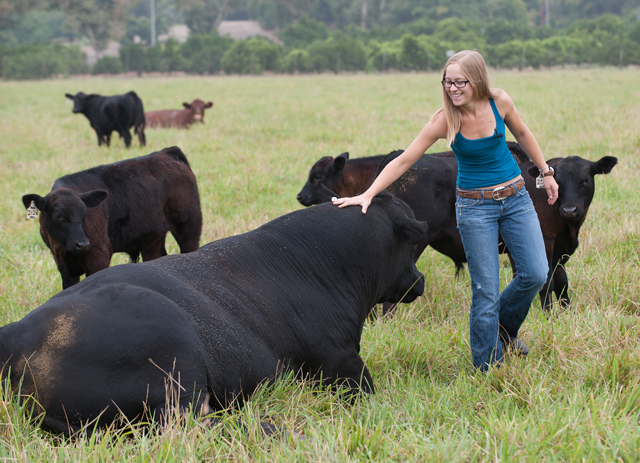 Laura Fogg, animal science student and Beef Unit student assistant