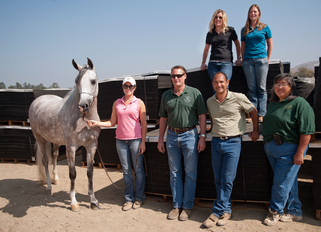 Arabian Horse Center Goes Green