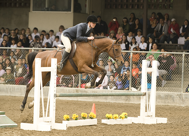 Arabian Horse Center Marks CPP's 75th Anniversary