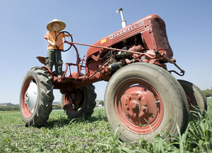 Farm Store Hosts Strawberry Fest, Tractor & Car Show