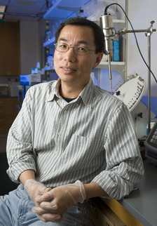 Grant Boosts Cell Biology Research