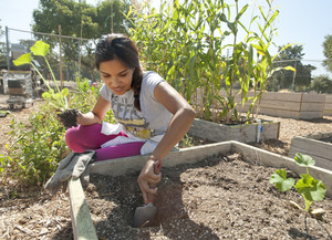 Teaching Nutrition from the Ground Up