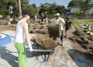 Professor Sharonda Wallace and Amanda Hughes load sod into a wheelbarrow to prepare a field at San Antonio High School for a garden on Aug. 5, 2010.