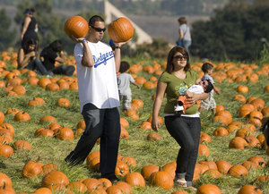 Pumpkin Festival Is a Field Day for Family Fun