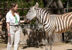 Katie Murtough and a zebra at Rancho Las Lomas in Silverado on May 12, 2011.