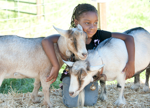 Petting Zoo Helps Build Community Bonds