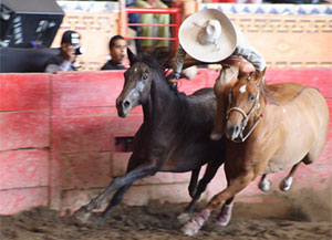 It's a College Fair -- and a Mexican Rodeo