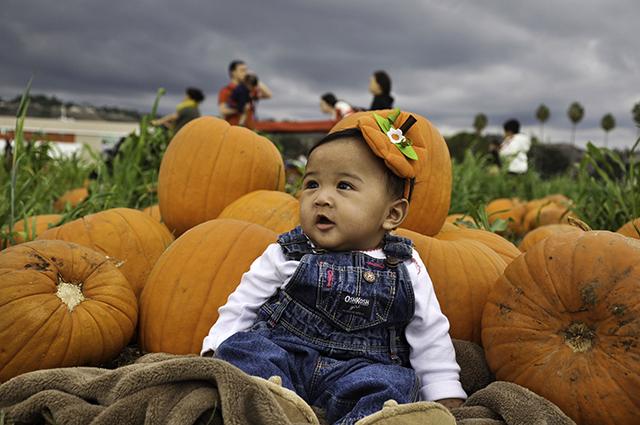 21st Annual Pumpkin Festival Set for Oct. 19-20