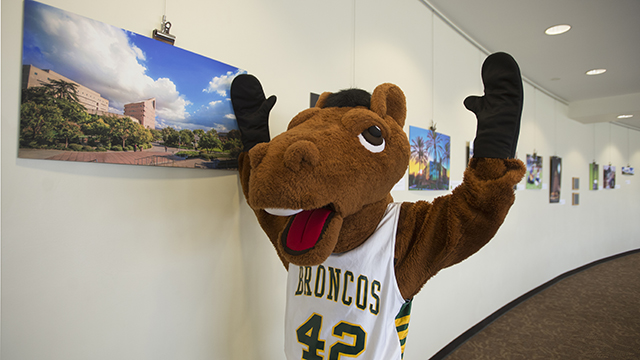 Billy Bronco at the photo contest gallery.