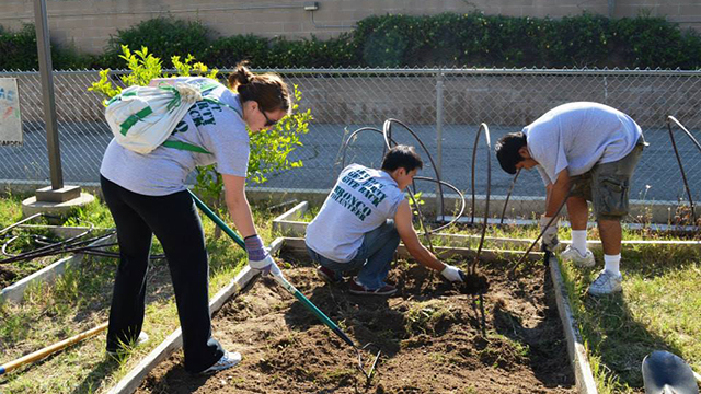 Students doing yard work for Pomona Beautification Day 2013.