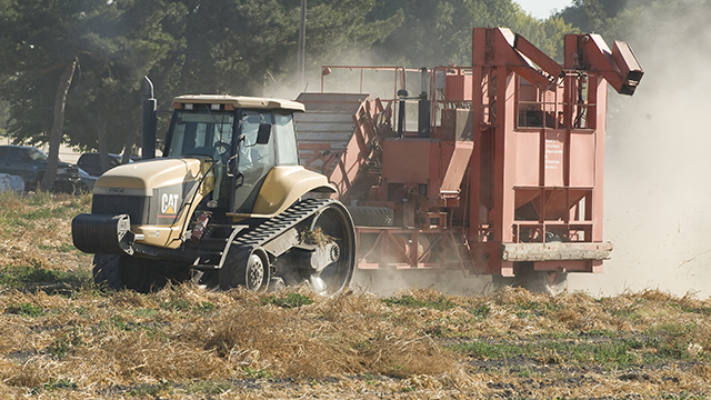 A bean harvester works farm land near the California Institution for Men in Chino.