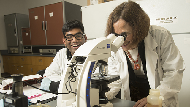 Biology Professor Jill Adler-Moore looks at a fungus sample in a microscope during Medical Mycology lab at Cal Poly Pomona.