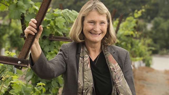 Mary Holz-Clause, dean of Cal Poly Pomona's College of Agriculture, was appointed to the California State Board of Food and Agriculture.