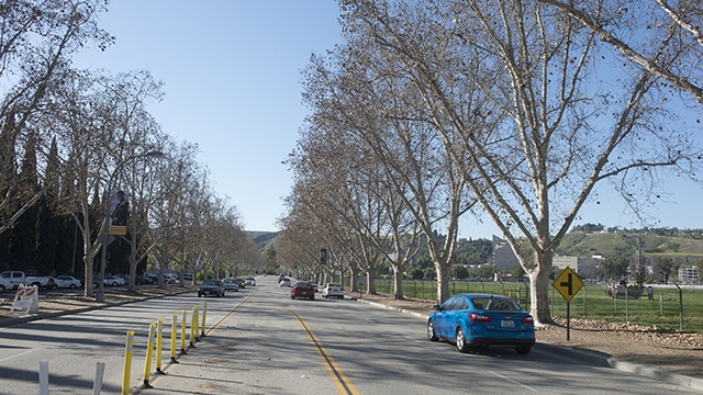 Kellogg Drive looking north toward campus