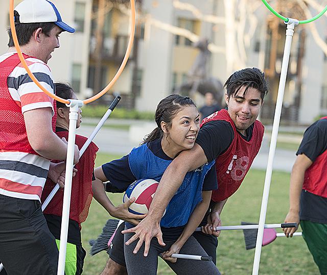 Quidditch Tournament