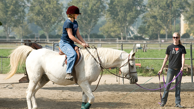 The College of Science and the W.K. Kellogg Arabian Horse Center are teaming up to offer joint camps for children this summer.