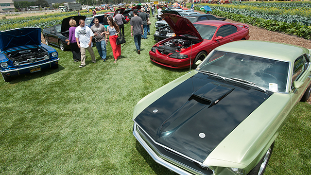 The 9th Annual Tractor and Car Show & Strawberry comes to Cal Poly Pomona Saturday, May 16.