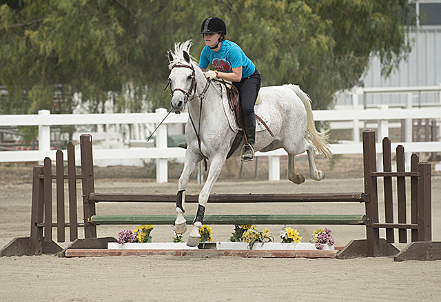 Veronica Edwards takes a jump on Alada Sprite at the Arabian Horse Center at Cal Poly Pomona.