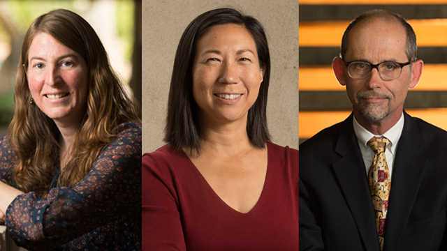 Professors Jennifer Switkes, Winny Dong and Richard Willson will receive the 2015 Provost's Awards for Excellence.