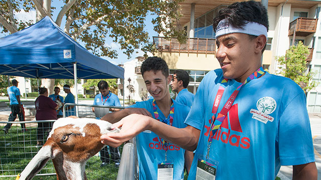 Agila Abdrba, a member of the Special Olympics team from Libya, feeds a young goat during a visit by Danny's Farm Petting Zoo near the Suites where teams from around the world are staying.