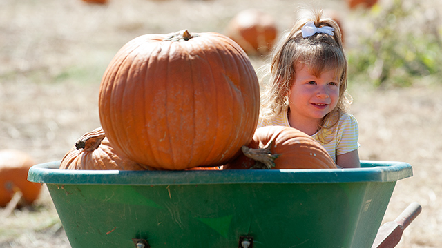 The annual Pumpkin Festival comes to Cal Poly Pomona Oct. 17-18.