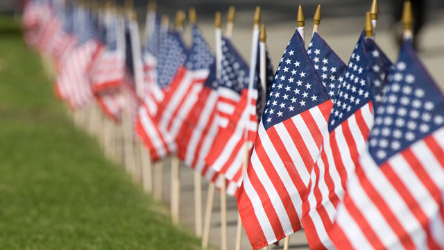 Flags on display on campus for Veterans Day.