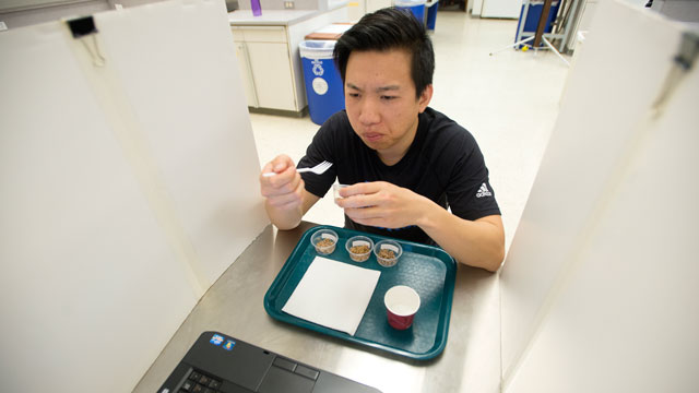About 120 volunteers from all over the Cal Poly Pomona campus taste tested food product made of insects by Human Nutrition and Food Sciences students.