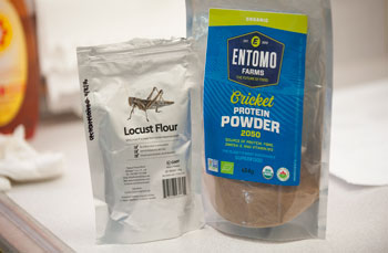 Locust and cricket flour at Food and Nutrition Lab taste test at Cal Poly Pomona.