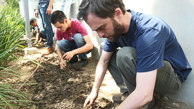 Cal Poly Pomona student clubs recently planted hops outside of Innovation Brew Works.