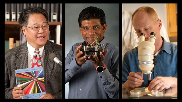 Professors Jeffery Scott Mio, Mariappan Jawaharlal and Craig La Munyon will recieve the 2016 Provost's Awards for Academic Excellence.
