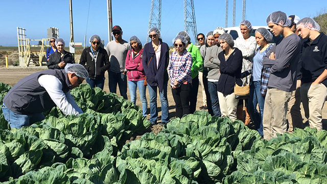 Students from Cal Poly Pomona and UC Davis tour a farming operation.