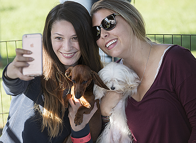 Students take a selfie with puppies during Puppy Pawlooza, an opportunity to de-stress with a puppy at University Park before finals.