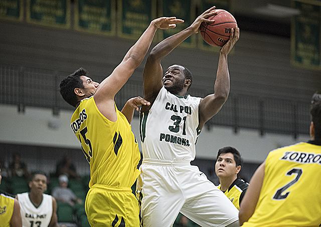 Bronco Basketball