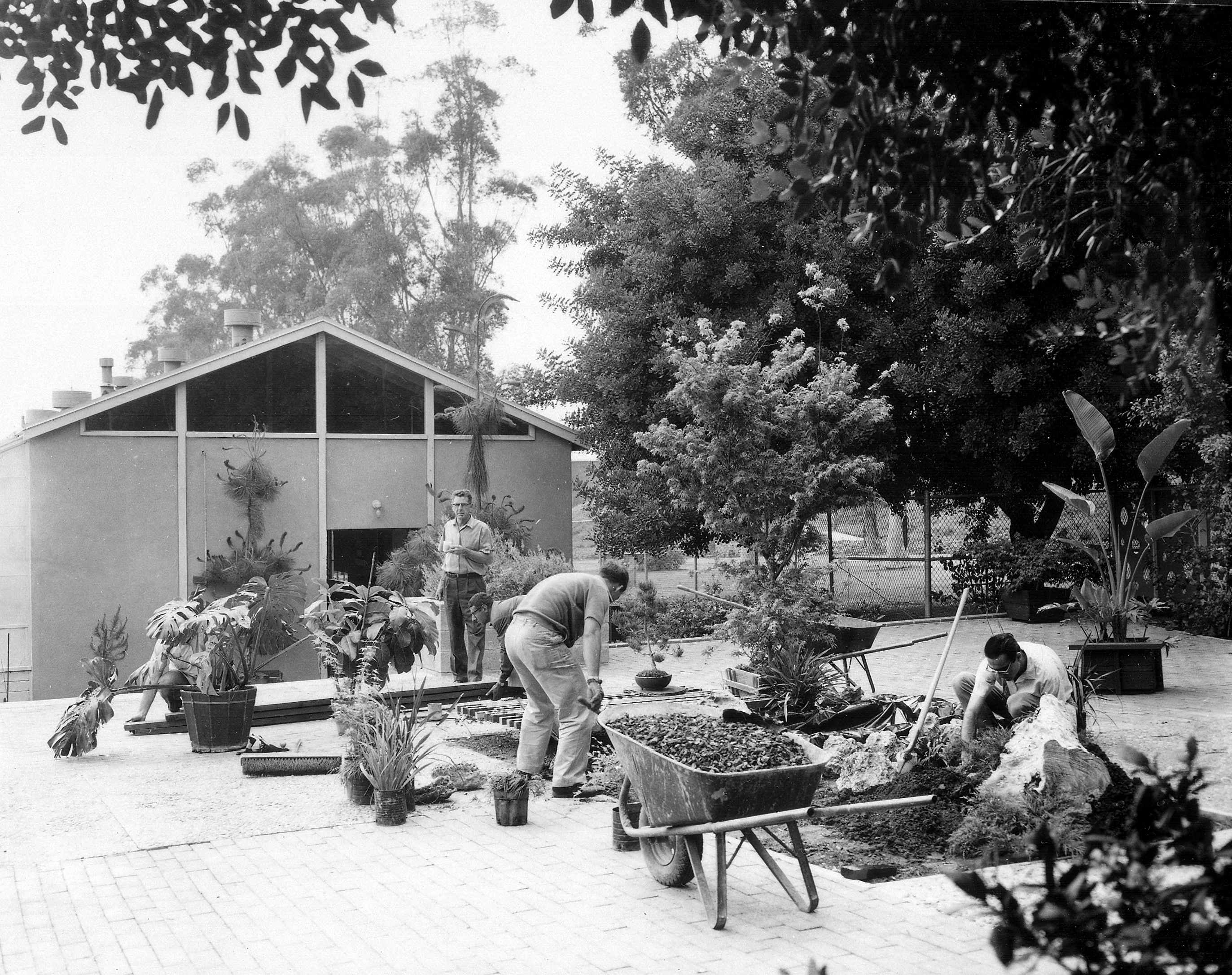 The Horticulture Unit