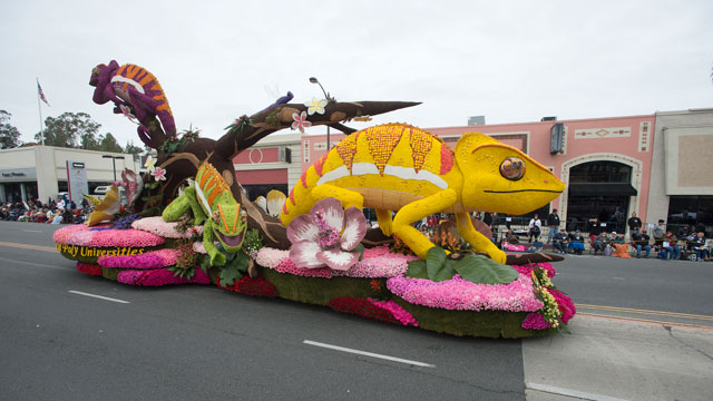The Cal Poly Universities Rose Float team is seeking design ideas for their 2018 Rose Parade entry.