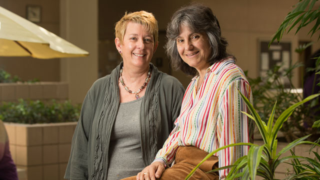 CEIS Professors Peg Lamphier and Rosanne Welch recently won the American Book Fest's 2017 Best Book Award for their encyclopedia highlighting the contributions of women to American history.
