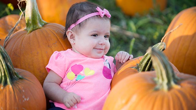 The pumpkin festival will be held Oct. 6 and 7 at AGRIscapes Center.
