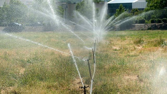 An Ag Valley pasture gets being irrigated with reclaimed water