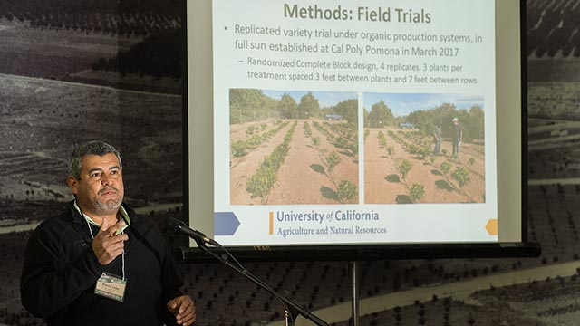 Ramiro Lobo Examples of raw coffee beans at Cal Poly Pomona's 2018 Coffee Summit.
