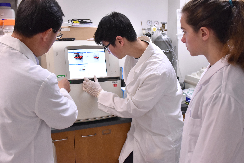 Professor Junjun Liu, graduate student Brandon Lam, and undergraduate Alana Schonbrun examine protein detection results on an imager.
