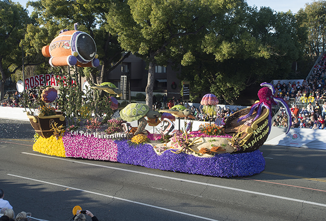 Winning Rose Float