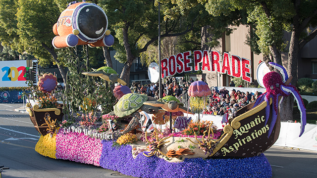 Rose Float Aquatic Aspirations
