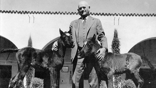 W.K. Kellog and 2 Foals.