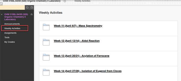 Blackboard course screenshot