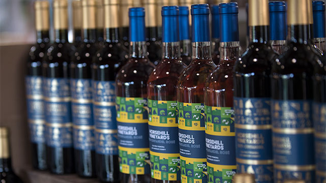 Bottles of Horse Hill Wine 2020 lined up in a row on a shelf.